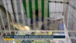 Papagaios são roubados de zoológico de Cascavel