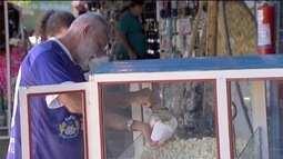 Vendedor de pipocas é um dos torcedores mais apaixonados pelo Aquidauanense