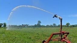 Agricultor usa sistema de fertirrigação e reduz custos da propriedade