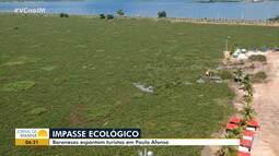Tapete verde: baronesas ainda se multiplicam e causam prejuízos em Paulo Afonso