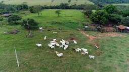 Polícia mapeia propriedades para reduzir crimes na zona rural