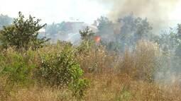 Mirante Rural destaca aumento de focos de queimadas no Sul do MA