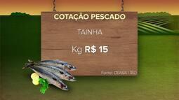 Confira a cotação do pescado para a semana