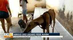 Abrigo São Lázaro pede ajuda para arrecadar alimentos e recursos