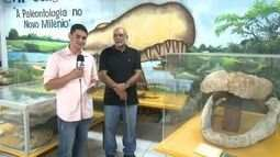 Mandíbula de Purussauro achada por menino é levada à Universidade Federal do Acre