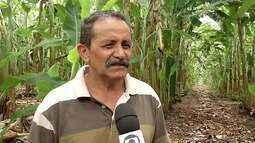 A situação dos perímetros irrigados no Ceará