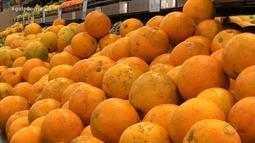 Já está aberta a colheita da laranja valência no Alto Uruguai