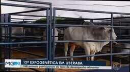 Expomaq reúne novidades de equipamentos e implementos agrícolas em Uberaba