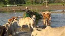 Parte 1: Veja as dificuldades de agricultores do Amazonas após cheia