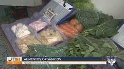 Feira de Orgânicos é opção saudável em Santos
