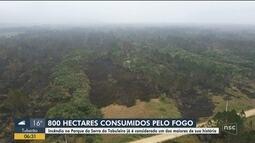 Incêndio destrói 800 hectares na Serra do Tabuleiro, na Grande Florianópolis