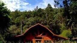 Madeira é inspiração para construções de casas no Sul do Rio