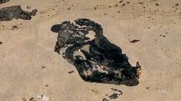 Relatório da Petróbras diz que óleo nas praias do NE parece petróleo extraído na Venezuela
