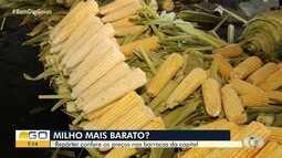 Feirantes abaixam preço do milho em Goiânia