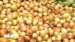 Preço da cebola desagrada produtores do Oeste Paulista