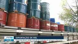 Produtores de Roraima vendem mais de 50 toneladas de mel para a Alemanha