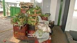 Ceasa de Campo Grande desenvolve processo de reciclagem de resíduos