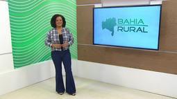 Bahia Rural - 02/08/2020 - Bloco 3