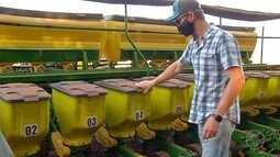 Agricultores esperam pela umidade ideal para iniciar plantio da nova safra de soja