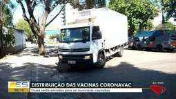 Doses de vacinas contra Covid-19 começam a ser distribuídas aos municípios do ES