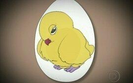 Como é o desenvolvimento do pinto dentro do ovo