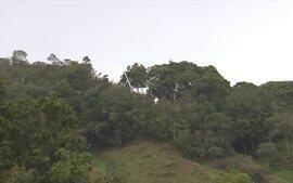 Equipe do SporTV mostra a região onde caiu o avião que levava a Chapecoense