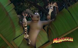 Confira o trailer do filme 'Madagascar'