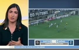Mayra Siqueira diz que presidente do Santos não está convencido de dispensar Lucas Lima