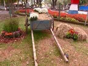 Festa no jardim Blog Hoje em casa da Rede Globo