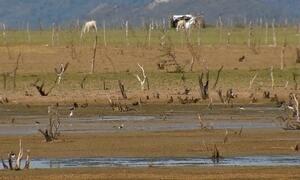 Maior reservatório de água do Nordeste está secando