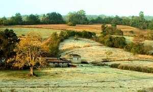 Baixas temperaturas no Sul exigem cuidados dos moradores de áreas rurais