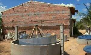 Fogão biodigestor usa esterco de gado como matéria-prima