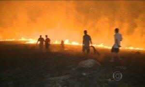 Polícia investiga causa de incêndio em área de proteção em Porto Alegre
