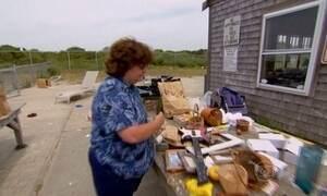Moradores de ilha nos EUA reciclam 90% do lixo e trocam itens usados