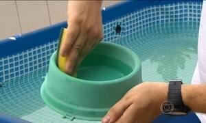 Veja como fazer uma faxina contra a dengue