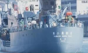 Governo japonês volta a caçar baleias