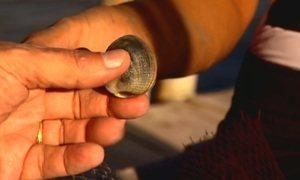 Brasileira ganha até R$ 600 por dia catando moluscos no mar de Portugal