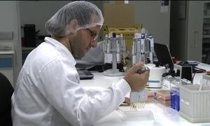 Brasil importa teste que diagnostica zika meses depois que o paciente teve a doença