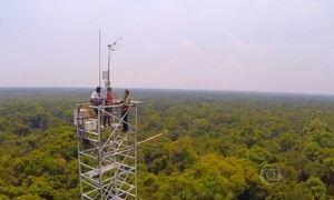 Torre de 42 metros de altura mede a pureza do ar amazônico