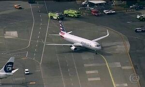 Aumentam os casos de pássaros que atingem aviões perto dos aeroportos