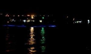 Fenômeno da natureza cria espetáculo de luz na água da Jamaica