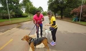 Hoje é dia de passear com o cachorro: um dia de dogwalker
