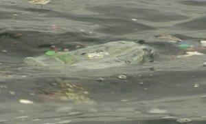 'Competição com obstáculos', diz Lars Grael sobre lixo na Baía de Guanabara