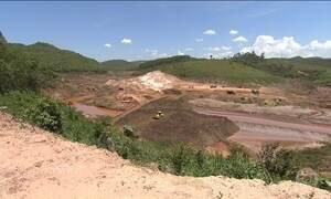 Samarco fez pouco para recuperar estragos ambientais, afirma Ibama