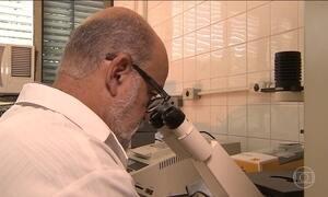 Pesquisadores descobrem pistas da doença que atinge Bahia e Ceará