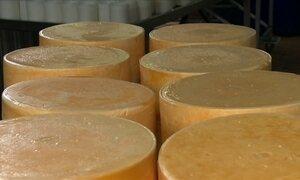 Família em Amparo (SP) produz queijo de qualidade e preserva o passado
