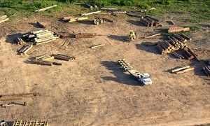 Mata do Jamanxim é cobiçada por madeireiros e garimpeiros