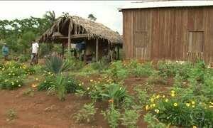 Ambientalistas temem a regularização  da ocupação de terras na Amazônia