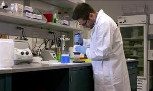 Exame de sangue em estudo pode detectar câncer em estágio inicial