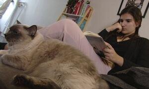 Empresária uniu a paixão por livros e gatos e abriu negócio lucrativo
